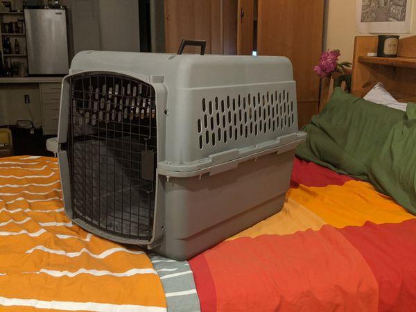 Pet carrier kennel