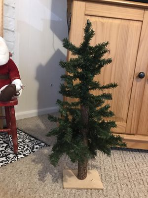 2' Alpine Tree for Sale in Kirkland, WA