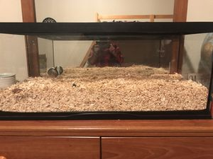 40 gallon tank. Good condition. for Sale in Madison Heights, VA