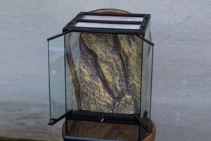 "Exo-Terra Reptile Glass Terrarium,12"" L X 12"" W X 18"" H for Sale in Citrus Heights, CA"
