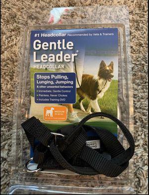 Dog HeadCollar for Sale in Jefferson City, MO