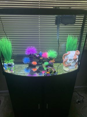 36 gallon fish tank. Sold with everything inside the tank, fish food and conditioner for the tank. 500-$550 for Sale in Laurel, MD