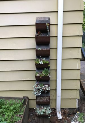 Succulent planter for Sale in Portland, OR