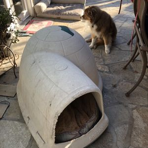 Dog House And Matress for Sale in Fresno, CA