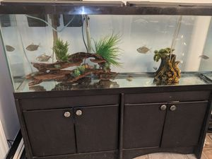 75 gallon fish tank including stand extras whisper air filter system in good condition $220 text Mike at {contact info removed} thank you for Sale in Winston-Salem, NC