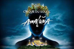 Cirque du soleil sacramento. AMALUNA for Sale in Ceres, CA