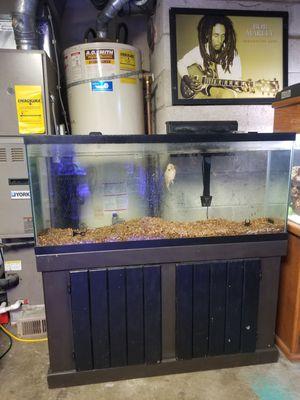 55g fish tank for Sale in Tacoma, WA