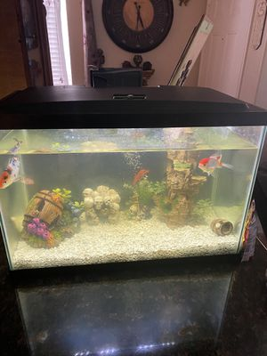 *** aquarium completely ready with two Koi Fishes and two Lobsters*** for Sale in Riverside, CA