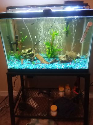 20 gallon tank w/stand for Sale in Ocean Springs, MS