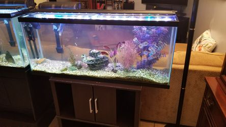 2 -55 gallon fish tanks $250 each obo for Sale in Indianapolis,  IN