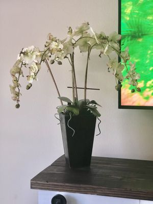 Orchid plant (Fake) for Sale in Ruskin, FL
