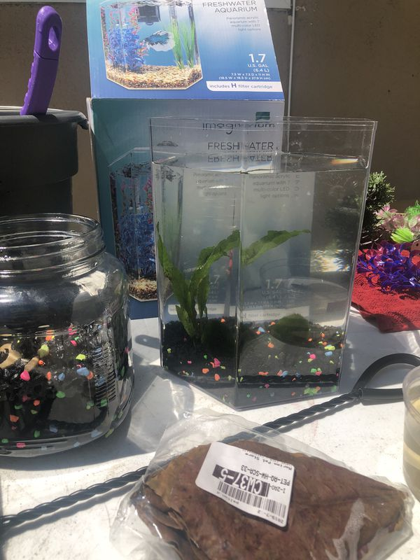 Fish/Tank/Aquarium Decor/Plants/Filter (betta)