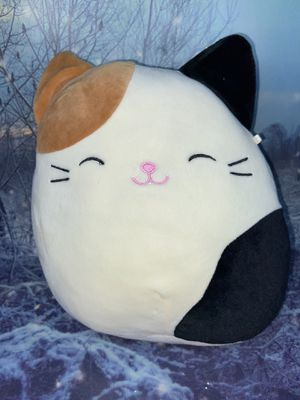 "Squishmallow Cat Cameron 8"" plush toy for Sale in Bellflower, CA"
