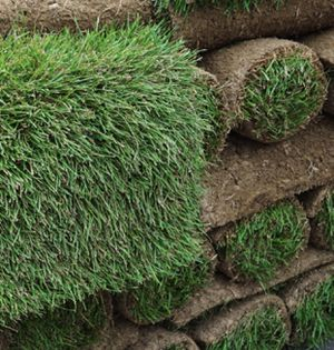 Sod for Sale in Los Angeles, CA