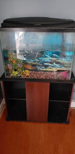 aquarium for Sale in Durham, NC