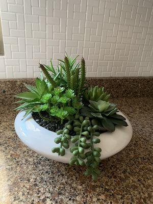 Artificial succulent plant for Sale in Phoenix, AZ