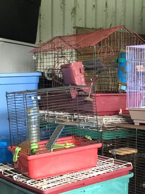 Variety of animal cages and accessories for Sale in Christmas, FL