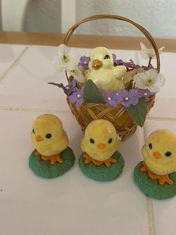 Easter Chicks for Sale in Princeton,  NJ