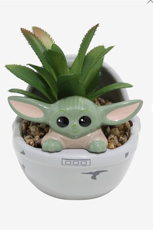 Baby yoda the child succulent plant for Sale in Pittsburg, CA