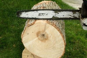 Firewood FREE (Needs to Be Cut) for Sale in Auburn, WA