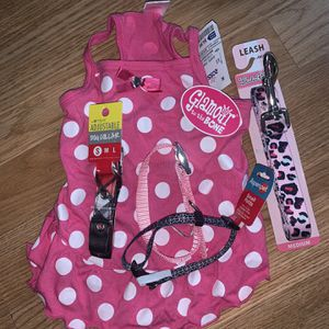 Small Dog Accessories Leash and collar for Sale in Glendale, CA