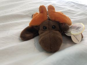 Beanie Babies Chocolate 1993 brand new condition for Sale in Berkeley, CA