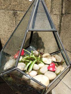Glass Terrarium for Sale in North Tustin,  CA