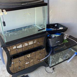 FISH TANKS for Sale in Newcastle, WA