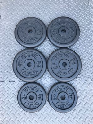 Weight Plates 50 lbs for Sale in Johns Creek, GA