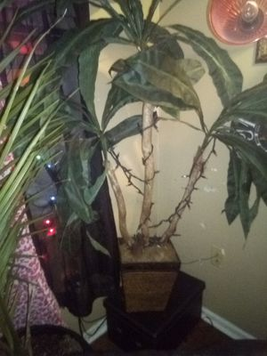 Tropical fake tree and regular tree and fake plants for Sale in Richmond, KY