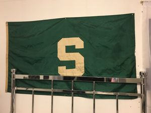 Michigan state Flag and big glove for Sale in Grosse Pointe Park, MI