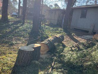 Free Logs for Sale in Atlanta,  GA