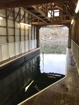 Boathouse moorage Chambers Creek for Sale in Joint Base Lewis-McChord, WA