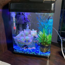 2.5 Gallon Mini Aquarium NOW WITHOUT the LED LIGHT, AND FILTER!!! for Sale in Madera,  CA