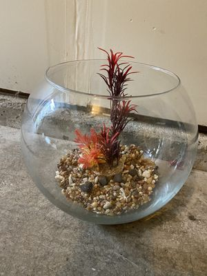 Betta fish tank for Sale in Happy Valley, OR
