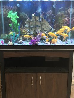 65 Gallon Aquarium & Stand for Sale in Rockville,  MD