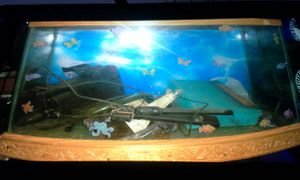 EURO STYLE AQUARIUM TANK WITH FILTER for Sale in Pawtucket, RI