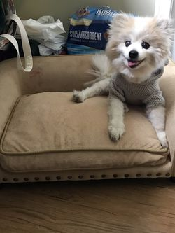 Small Dog Furniture Dog Bed/couch for Sale in Redlands,  CA