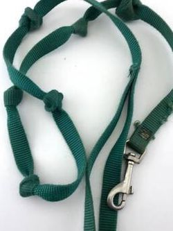 Small (short - approximately 45 inches long) green dog leash for Sale in Teaneck,  NJ