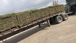 Grass pallets (fresh cut & Free delivery ) for Sale in Rosenberg, TX