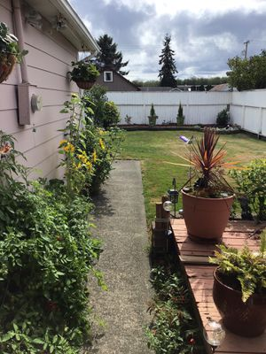3bdr 1 1/2 br house for sale for Sale in Hoquiam, WA