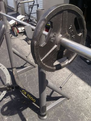 Golds gym weight bench/weights for Sale in Tampa, FL