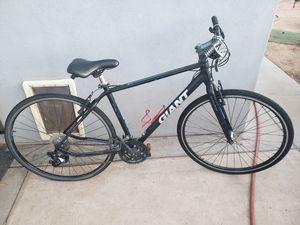Giant road bike for Sale in Mesa, AZ