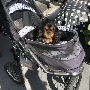 Dog Stroller For Sale for Sale in Long Beach, CA