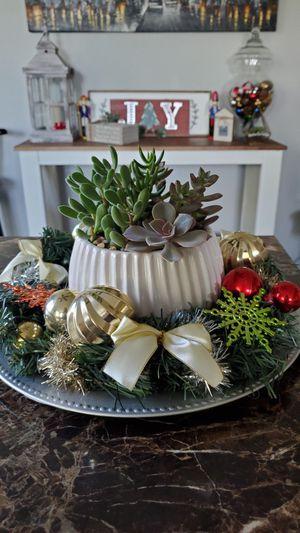 Succulent centerpiece christmas decor for Sale in Menifee, CA