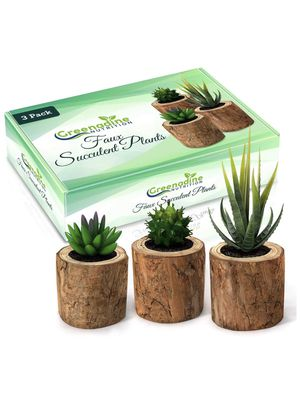 Fake Succulent & Feaux Cactus Plants - Set of 3 | Artificial Plastic Decor in Small Wooden Planter Pot | Real Live Looking Mini Faux Plant for Home, for Sale in Brooklyn, NY
