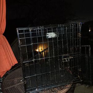 Dog Haula for Sale in Dallas, TX
