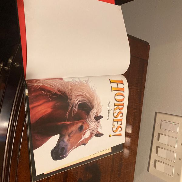 Breyer Horses And Picture Horse Book