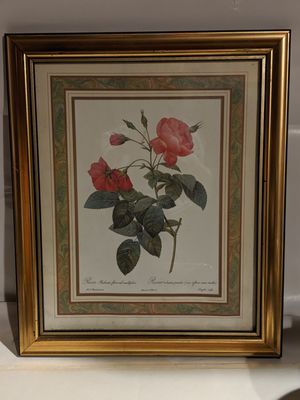 Vintage French Botanical Gold Gilt Frame for Sale in Trout Valley, IL