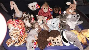 Beanie Babies 17 wild animals for Sale in Columbus, OH